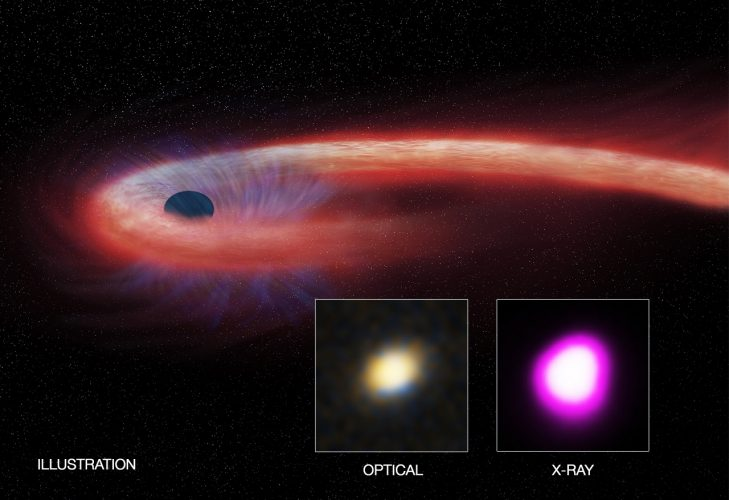 Czarna dziura żywiąca się gwiazdą przez dekadę