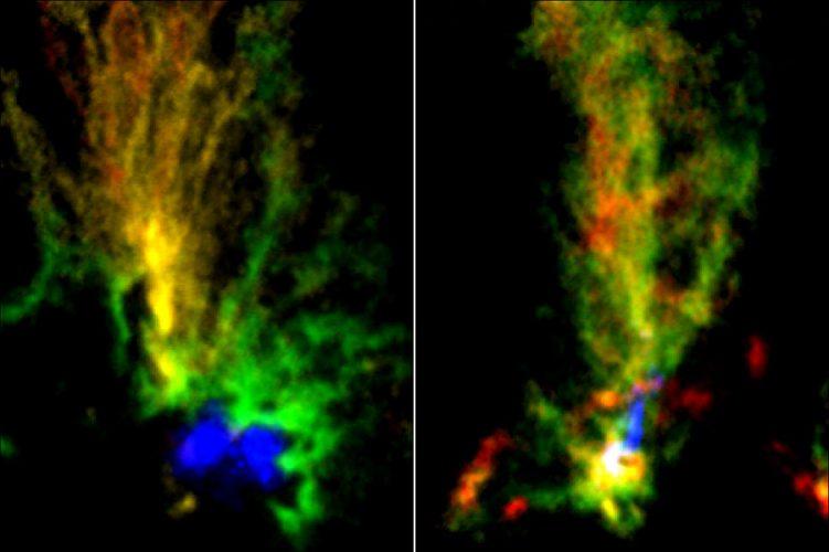 Dwa kosmiczne pawie pokazują gwałtowną historię Obłoków Magellana
