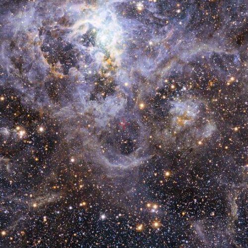 Masywne podwójne układy kontaktowe otwierają nowe okno na ewolucję gwiazd